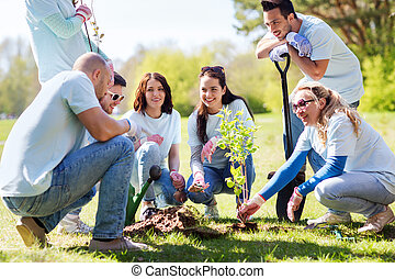 group of volunteers planting tree in park - volunteering,...