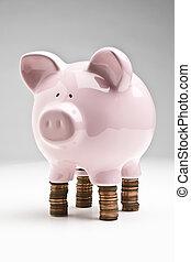 el balancear, su, presupuesto