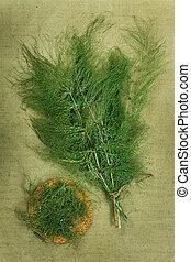 Equisetum, horsetailDried herbs Herbal medicine,...