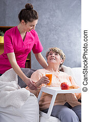 Home assistance for disabled - Nurse helping in daily...