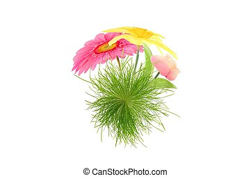 flower and grass microworld isolated on white background