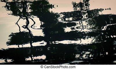 Forest Reflection In Water Abstract