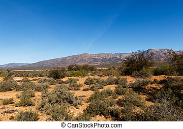 Dry Landscape - South Africa's geography. South Africa...