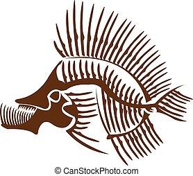 Fish skeleton. - Skeleton of a fish.