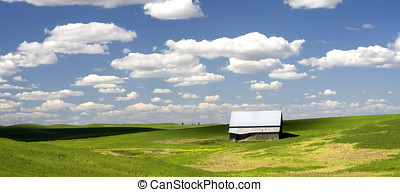 Barn in a field in the Palouse.