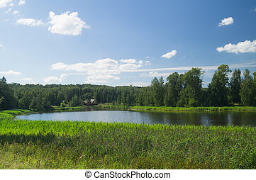 Sunny summer day river landscape