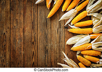 Corncobs on wooden background