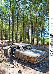 Abandoned Car - Photo of Abandoned Car in Forest