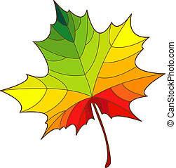 Maple leaf - Colorful maple leaf over white EPS 8, AI, JPEG