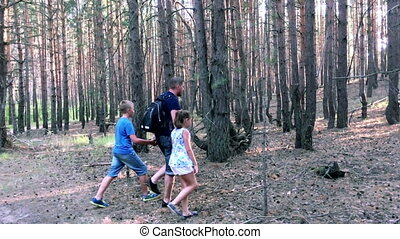 Father with son and daughter walking in forest HD