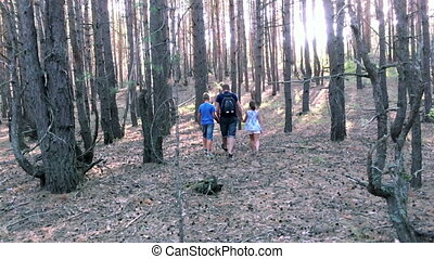 Family walking in the woods HD