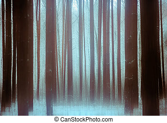 Trees In a Winter Snowy Forest