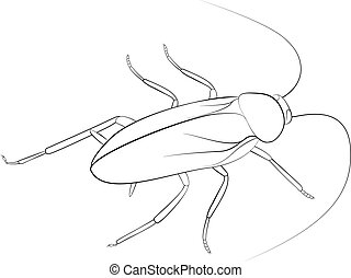 Cockroach sketch black monohrome color isolated on white...
