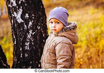 Little boy walking in autumn forest