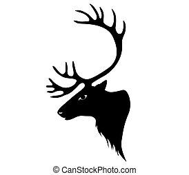 Deer. reindeer or caribou