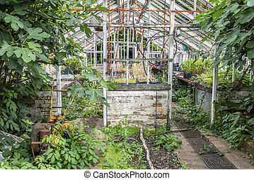 Stunning vintage Victorian era greenhouse left ro ruin in...