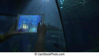 Taking pictures of shark by tablet at big aquarium. Siam...