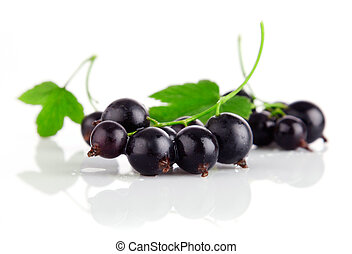 fresh currant fruits with green leaves