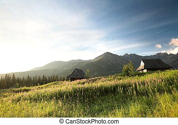 Valley in the Tatra Mountains - The historical shepherd's...