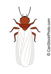 Winged Termite Insect Vector Illustration