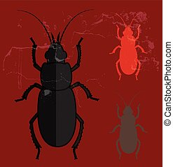 Creepy Totengraber Insects Vector Illustration