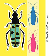 Totengraber Insects Vector Illustration
