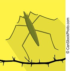 Water Strider Wild Insect Vector Illustration