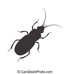 Totengraber Insect Silhouette Vector Illustration
