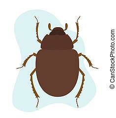 Scarab Beetle Insect Vector Illustration
