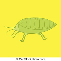 Plant Lice Insect Vector Illustration