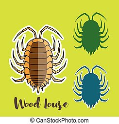 Woodlouse Vector Insects Illustration