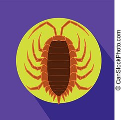 Lice Insect Vector Illustration