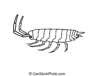 Drawing Art of Woodlouse Insect Vector Illustration