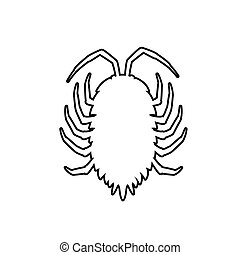 Drawing Art of Lice Insect Vector Illustration