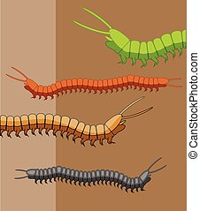 Millipede Worms Vector Illustration