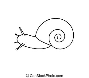 Snail Drawing - Cartoon Snail Animal Drawing Vector...