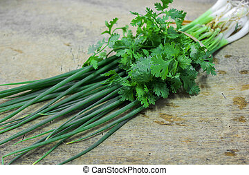 Spring Onion and coriander