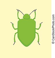Creepy Beetle Insect Vector Illustration