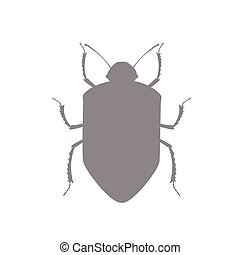 Beetle Insect Vector Shape Design
