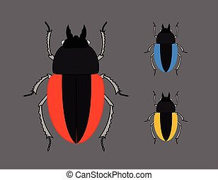 Scarab Beetle Insects Vector Illustration
