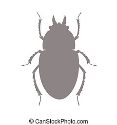 Shape of Scarab Beetle Insect Vector Illustration