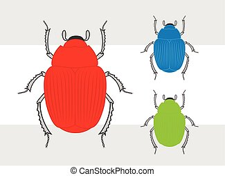 Colorful Beetle Insects Set Vector Illustration
