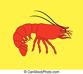 Prawn Fish - Red Creepy Prawn Fish Isolated on Yellow...