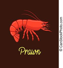 Prawn Vector - Seafood Prawn Animal Vector Illustration