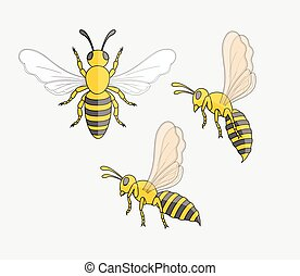Hornet Insects Vector Set