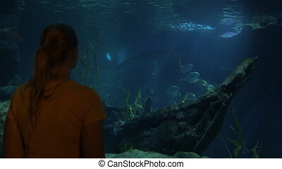 Young woman in Bangkok, Thailand at the oceanarium of Siam Ocean World watching on fish