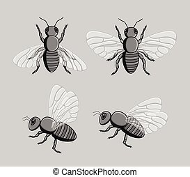Wild Bees Vector - Creepy Wild Bees Vector Insects Set