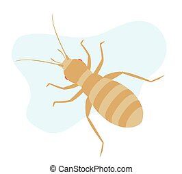 Louse Insect - Creepy Tiny Louse Insect Vector Illustration