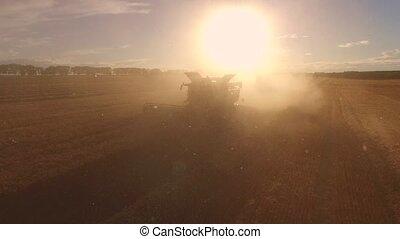 Combine in cloud of dust. Sun is shining over field....