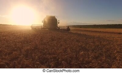 Harvester and bright sun.